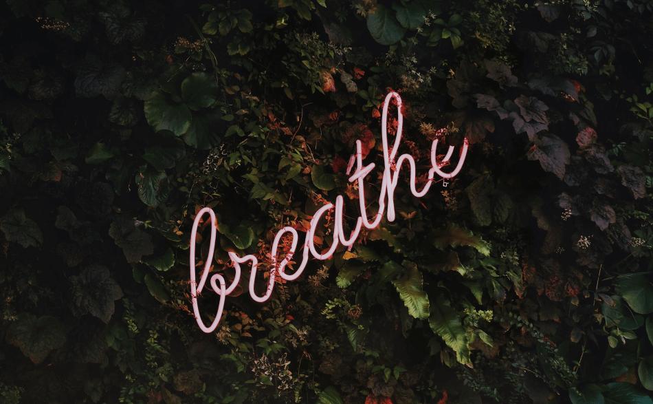 Mindfulness Meditation Breathing